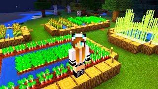Секреты игры Майнкрафт - Cтроительство Майнкрафт фермы со Светой.