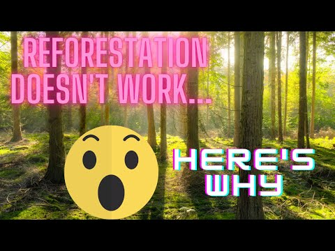 What's Wrong with Reforestation? (SPECIAL Documentary)