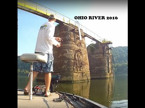OHIO RIVER BEATDOWN - MULTISPECIES