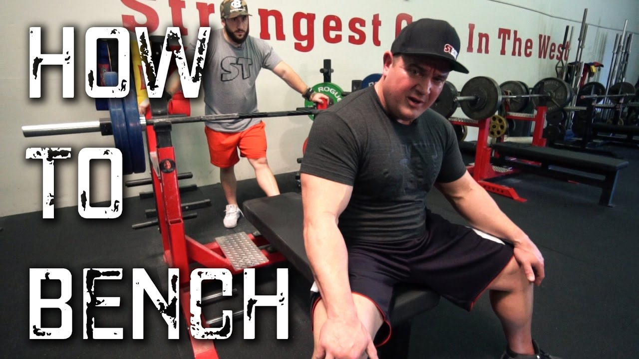 Download Bench Press Like a Beast! (The Ultimate How To Bench Video)