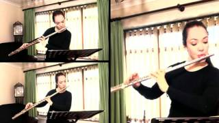 J.S. Bach: Flute Sonata in B minor, BWV 1030 (Movement 3)