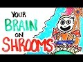 watch he video of Your Brain On Shrooms