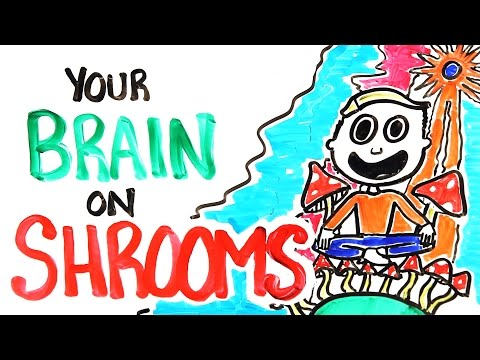 Your Brain On Shrooms - YouTube