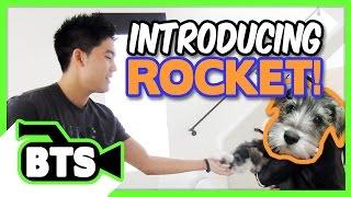 Introducing Rocket! (BTS)