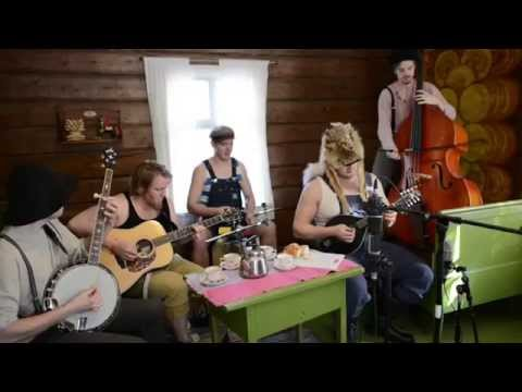 Seek And Destroy by Steve'n'Seagulls (LIVE)
