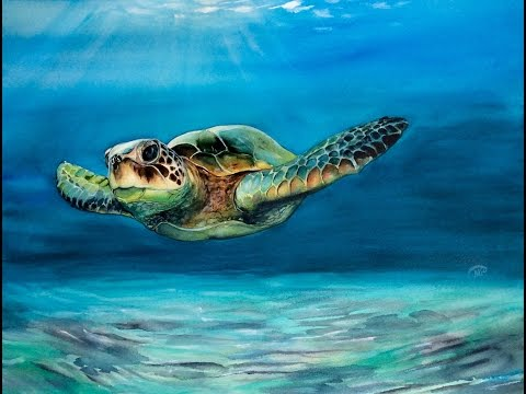 Watercolor Sea Turtle Painting Demonstration