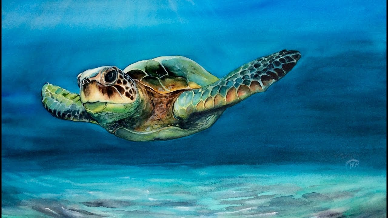 Watercolor Sea Turtle Painting Demonstration Youtube