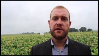 Solaris Tobacco Plant Fuel Ian Cruickshank Part 2