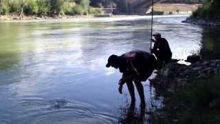 Fishing on the moss. Tevzaoba xavsze