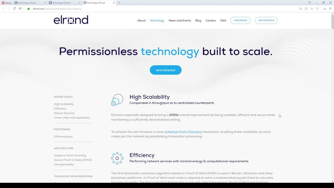 Elrond - High Scalability обзор характеристики