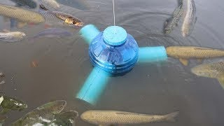 Smart Girl Make Fish Trap Using PVC And Plastic Bottle To Catch A Lot of Fish thumbnail