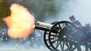 Hyde Park and Tower of London gun salute for Princess Charlotte