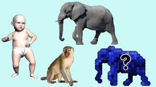 животные для детей умный ребенок - животных лес для детей на английском языке