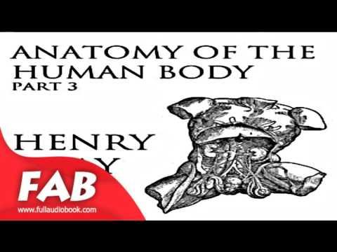 Anatomy of the Human Body, Part 3 Gray's Anatomy Full Audiobook by Henry GRAY
