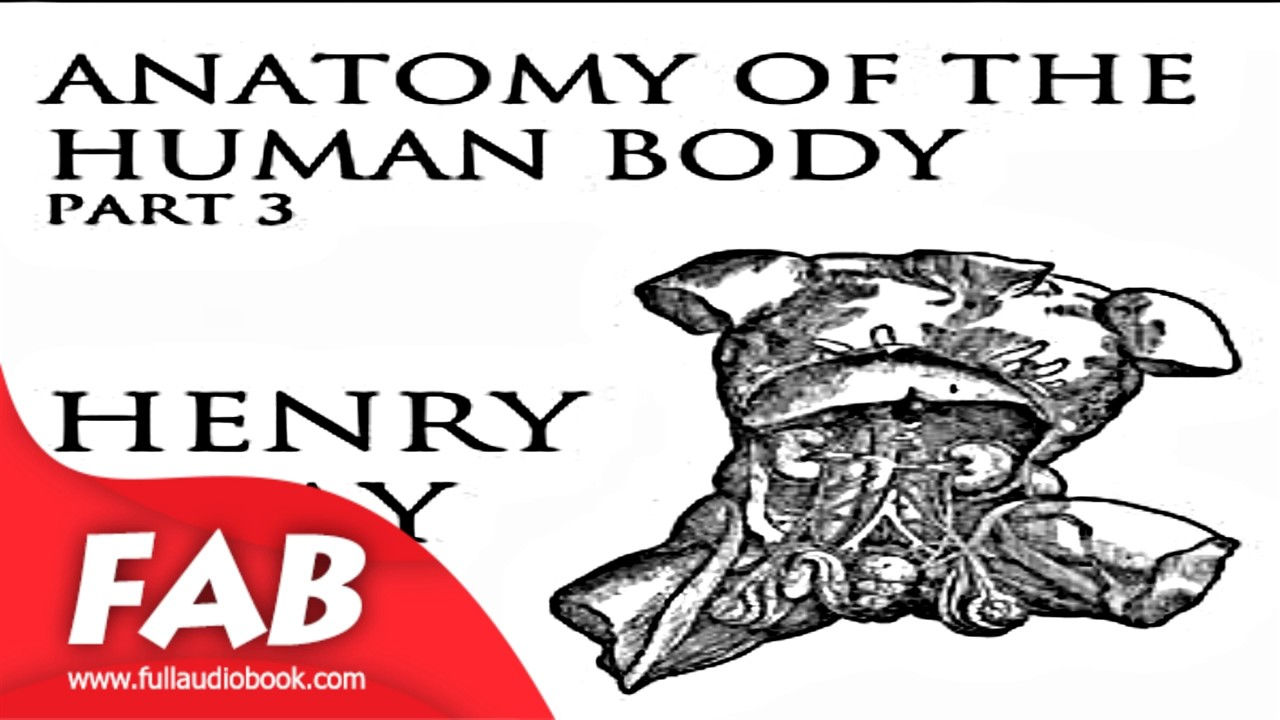 Anatomy Of The Human Body Part 3 Grays Anatomy Full Audiobook By