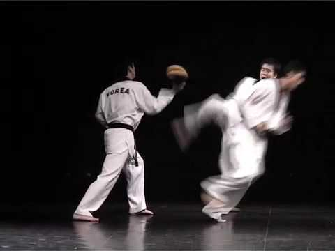 Taekwondo Video 4