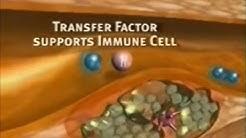 4Life Transfer Factor® Cardio™