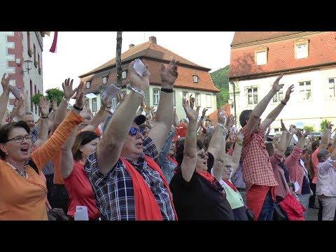 Chor der 1000 Stimmen zum Stadtjubiläum in Zeil am Main