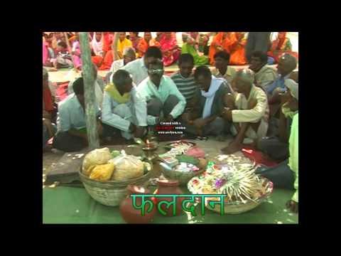 Gondi Vivah (Chhattisgarh)  Part 1