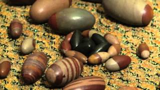 Healing Crystals ~ Shiva Lingam ~ Where it all Began