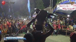 Bantengan Liar Pelompat Pagar - Wijoyo Putro Original Live Bulakmiri 2018
