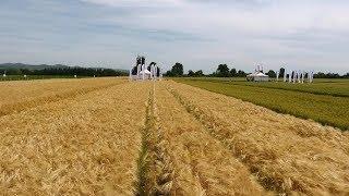 Успешно земеделие - броят от 14.06.2018