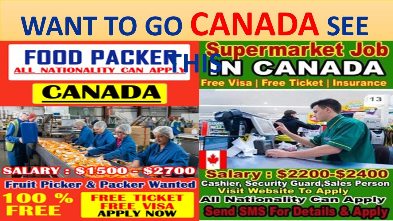 i want to go to canada for free