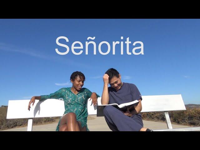 SHAWN MENDES, CAMILA CABELLO - SEñORITA | ChangEdwardS