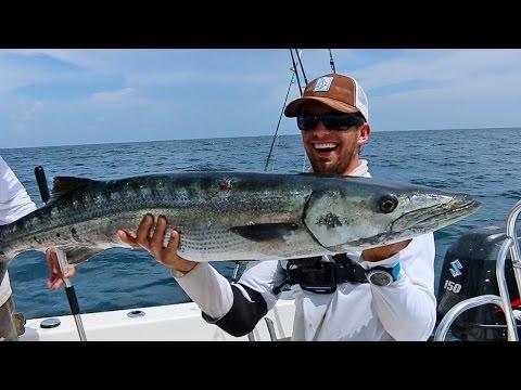 Epic Barracuda Fishing Action!  ft Hushin