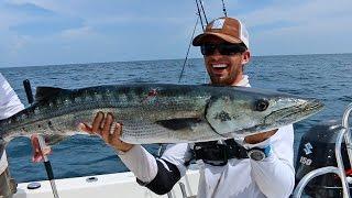 Epic Barracuda Fishing Action! - ft. Hushin