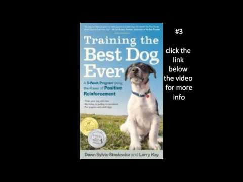 amazons top 10 dog training books