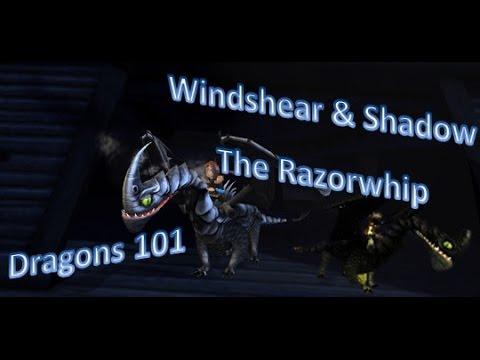 Dragons 101 Windshear Amp Shadow