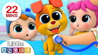 BINGO Song | Bingo's First Bath +More Nursery Rhymes by Little Angel