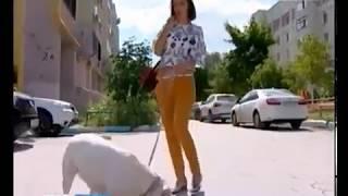 В Самарской области проживает около 3,5 тысяч инвалидов по зрению