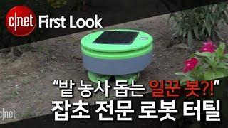 """""""밭 농사 돕는 일꾼 봇?!"""" 잡초 전문 로봇 터틸"""