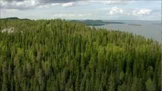 Jean Sibelius - Finlandia thumbnail