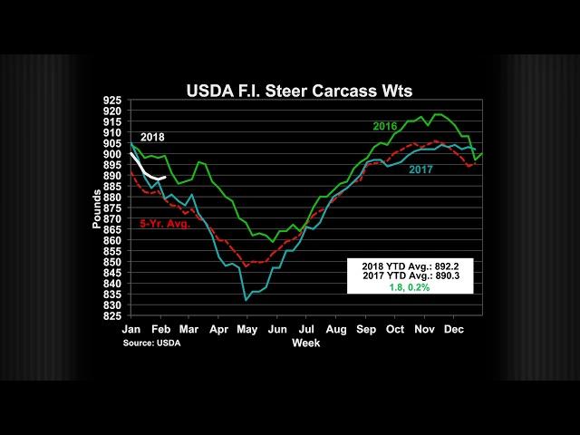 CattleFax Market Report