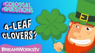 "Are 4-Leaf Clovers ""Lucky?"" 
