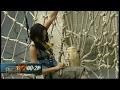 Fort Boyard 2008 - Toile d'araignée
