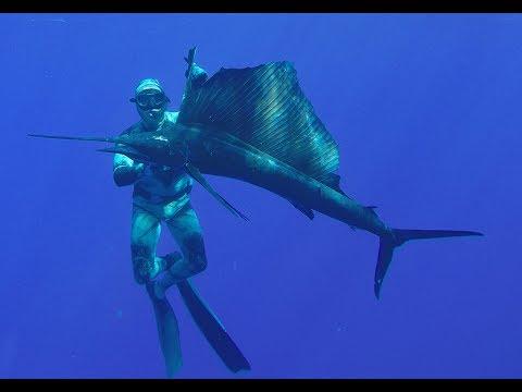 SAILFISH SUICIDE- Deep Sea Fishing In Moorea, South Pacific