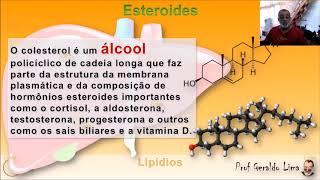 Lipídios 2