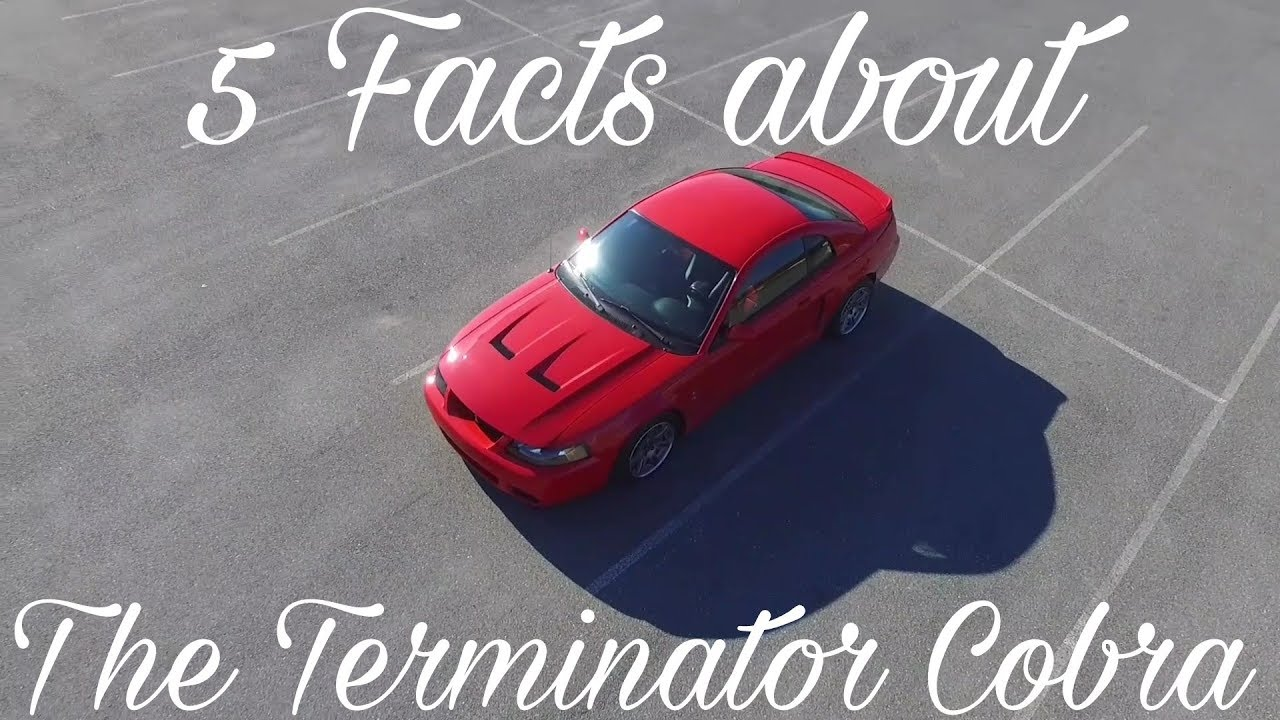 Terminator Cobra Years