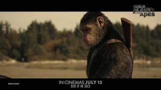 Планета обезьян: Война (2017) - Международный трейлер