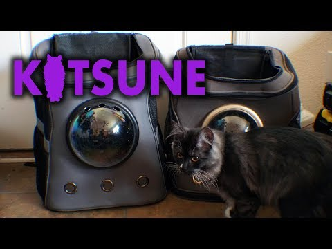 XL Pet Carrier Backpack Review Update