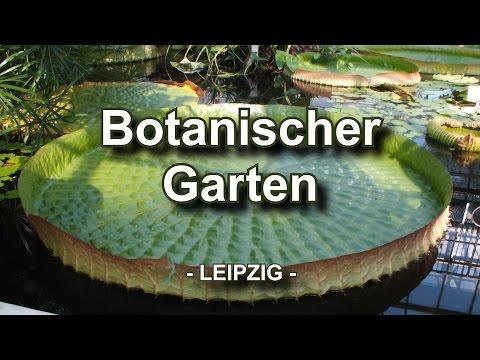 Botanischer Garten - Leipzig
