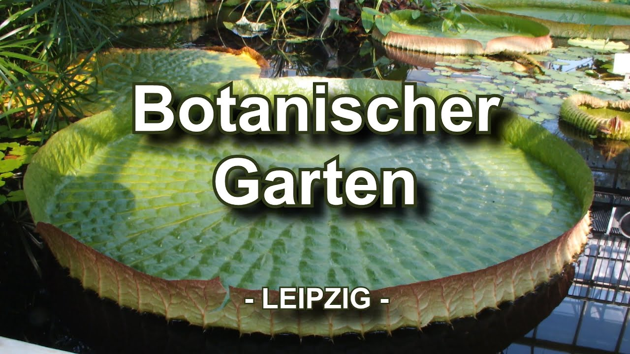 botanischer garten leipzig youtube. Black Bedroom Furniture Sets. Home Design Ideas