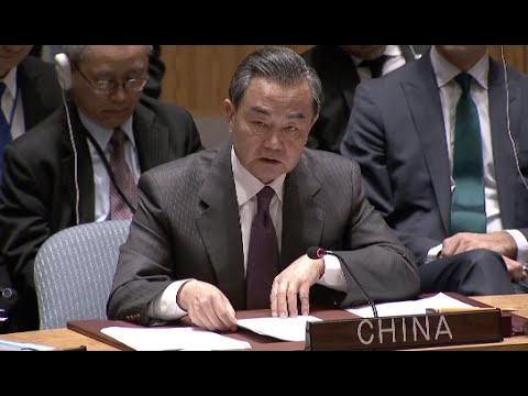 China Welcomes Adoption of UN Security Council Resolution on Syria: FM