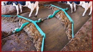 भई वाह क्या मशीन है  amazing modern automatic coe farming technology,