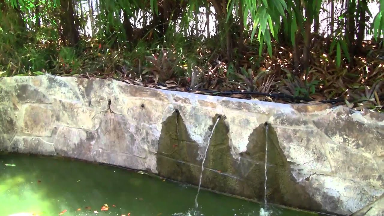 Jardin japones youtube for Jardin japones ponce