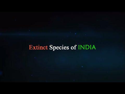 Extinct Species Of INDIA